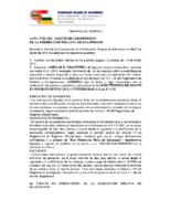 acta n10 comite competicion