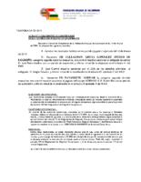 acta n17 comite competicion