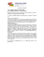 acta n9 comite competicion