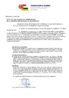 acta nº 2 comite competicion